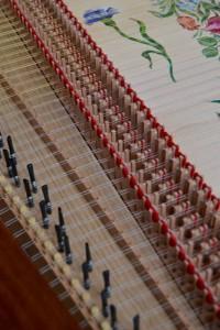 harpsichord-jacks-federico-mascheroni